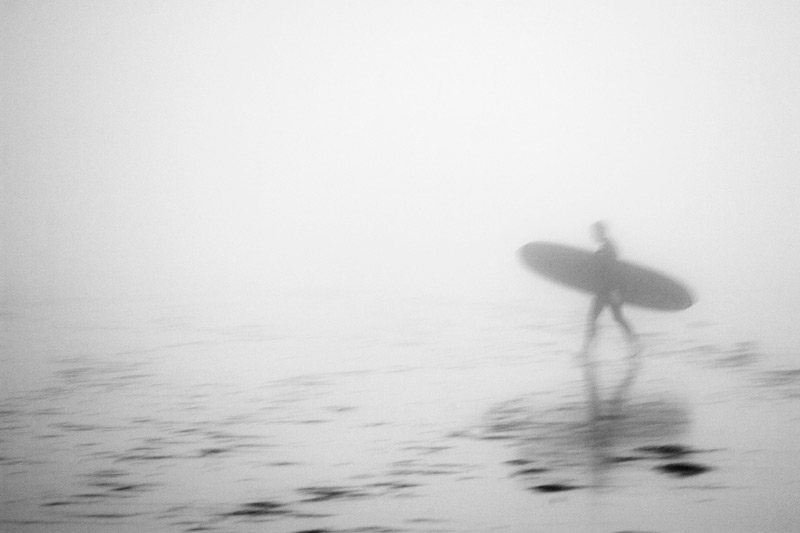 Luke-VanVoorhis-2013-The-Fog-Rose-High-IMG_7050
